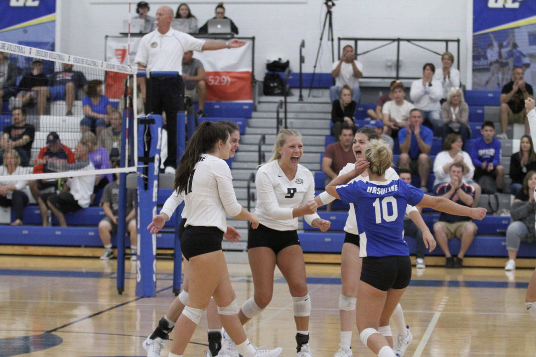 Volleyball players celebrate.